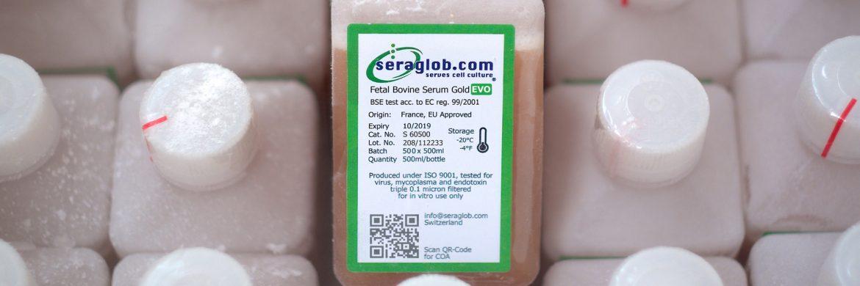 Seraglob Fetal Bovine Serum Gold EVO S 60500